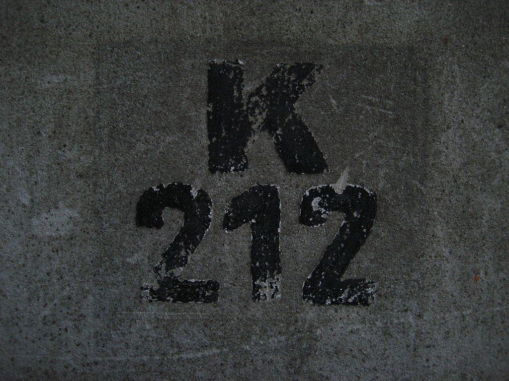 IMG-2863.jpg